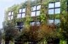 http://www.vchauphotography.com/wp-content/uploads/2012/02/Grass-building-paris.jpg