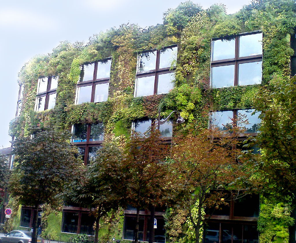 Building with Creepers,  Paris
