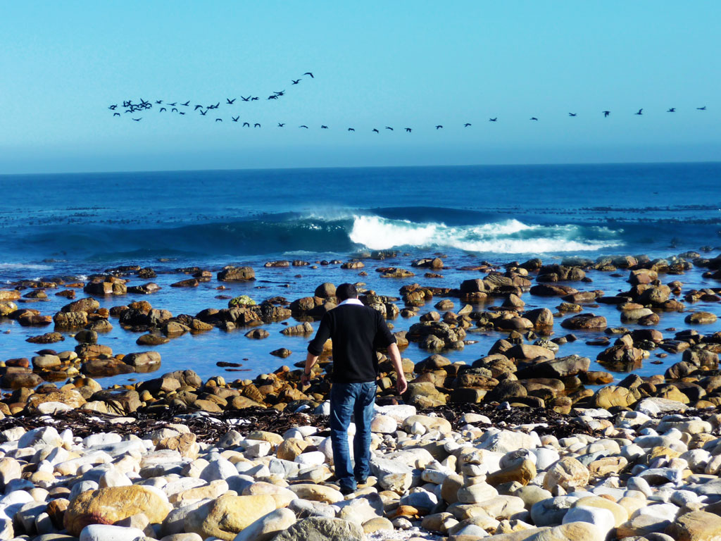 Cape   of  Good  Hope  –  Cape  Town,    South  Africa